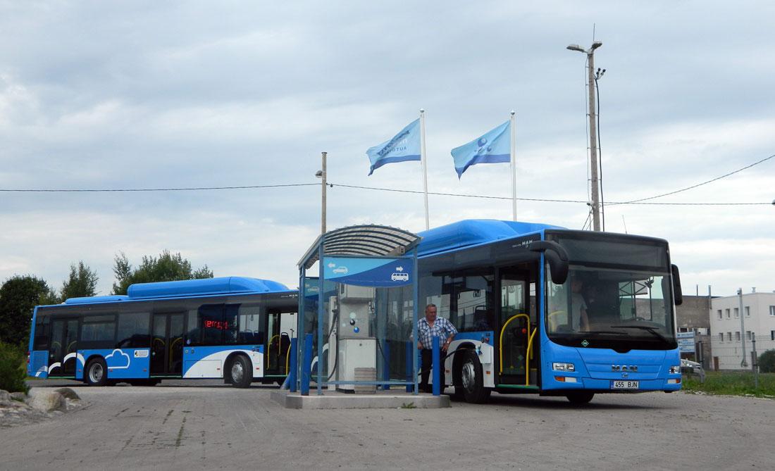 Valitsus kavandab maakonna bussiliinidel tasuta sõitu